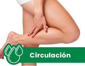 CIRCULACION NATURALES